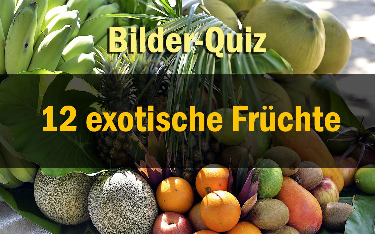 Bilder-Quiz - 12 Exotische Früchte